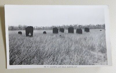Post Card #41 - Magnetic Ant Hills, Darwin Nt.  B&w Gloss Photograph.