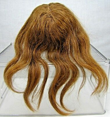 Head of Hair for an Antique Doll