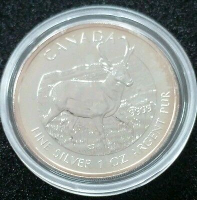 Canadian Wildlife 2013 Antilope, 1 Oz 999,9 Silber, 5 CAD   03