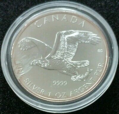 Canadian Wildlife 2014 Birds of Prey, 1 Oz 999,9 Silber, 5 CAD   01
