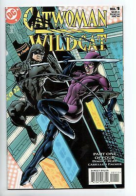 Catwoman / Wildcat #1 - 1st App Clawhammer (Claudio Volpe) (DC, 1998) - VF