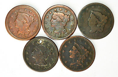 GROUP OF 5 CULL US LARGE CENTS - .99c START, NO RESERVE - L@@K!!
