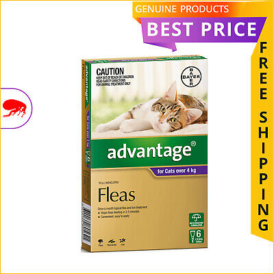 ADVANTAGE Flea Treatment for Cats Over 4 Kg PURPLE Pack 6 Doses + 2 Doses FREE