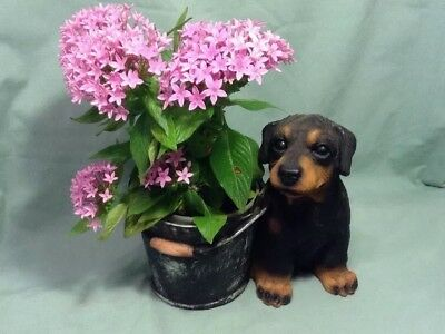 "Cute Rottweiler dog Plant Pot Holder Flower Planter 7""H Resin"