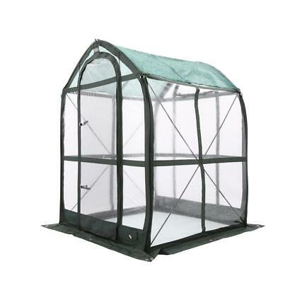 5'x5' PlantHouse Pop-Up Design Greenhouse Screened Vents Superb Air Circulation