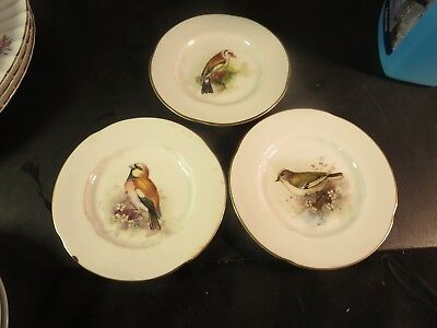 """Set of 3 Vintage Royal Worcester 5"""" Hand Painted Bird Plates"""
