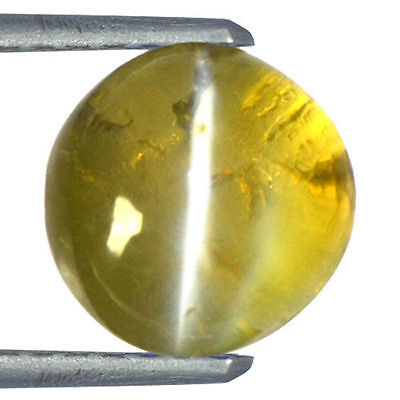 Natural Rare honey color  Chrysoberyl Cats Eye Round Certified Unheated 2.17 Cts