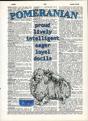 Pomeranian Dog Traits Altered Art Print Upcycled Vintage Dictionary Page