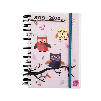2019-2020 Academic diary mid year A5 Day a Page Spiral Cover Olw Art