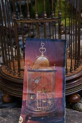 """$650 Antiqued Brass and Distressed Wood 28"""" Bird Cage Made in Florence, Italy"""