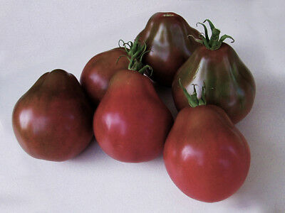 "Organic Seeds Heirloom Vegetable Tomato ""Black Truffle"". 30 Seeds."