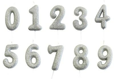Silver Glittery Number Digit Birthday Anniversary Candle Cake Topper Any Age 1-9