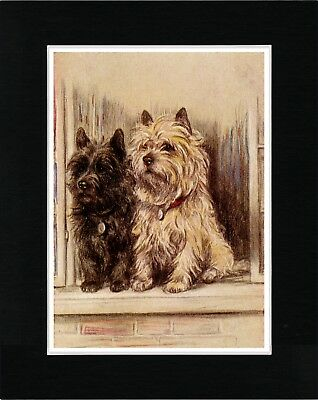 Cairn Terrier Dogs At Window Vintage Style Dog Art Print Matted Ready To Frame