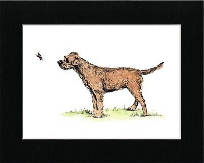 Border Terrier And Butterfly Lovely Vintage Style Dog Art Print Ready Matted