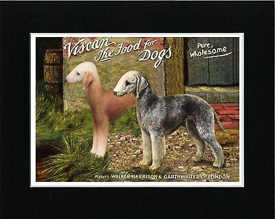 Bedlington Terrier Vintage Style Dog Food Advert Art Print Matted Ready To Frame