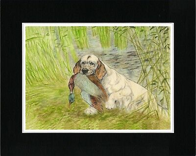 Clumber Spaniel Carrying Duck Great Vintage Style Dog Print Ready Matted