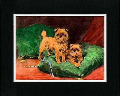 Brussels Griffon Two Dogs On A Green Cushion Lovely Dog Art Print Ready Matted