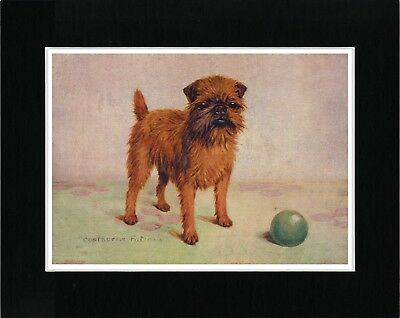 Brussels Griffon Lovely Vintage Style Little Dog And A Ball Print Ready Matted