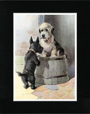 Dandie Dinmont And Scottish Terrier Vintage Style Dog Art Print Ready Matted