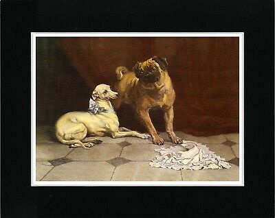 Italian Greyhound And Pug Lovely Vintage Style Dog Art Print Ready Matted
