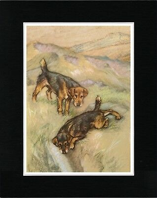 Lakeland Terrier Two Dogs Vintage Style Dog Art Print Matted Ready To Frame