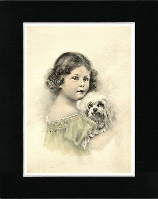 Little Girl Holding A Maltese Dog Lovely Dog Art Print Matted Ready To Frame