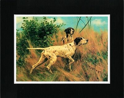 Pointer Lovely Vintage Style Dog Art Print Ready Matted