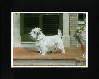 Sealyham Terrier Standing Dog Vintage Style Dog Art Print Matted Ready To Frame