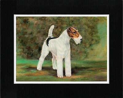 Wire Fox Terrier Standing Dog Lovely Vintage Style Dog Print Ready Matted