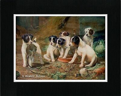 Smooth Fox Terrier Pups A Mighty Hunter Vintage Style Dog Art Print Matted