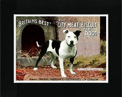 Staffordshire Bull Terrier Vintage Style Dog Food Advert Art Print Ready Matted