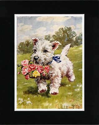 Westie Terrier Carrying Flower Basket Vintage Style Dog Art Print Ready Matted