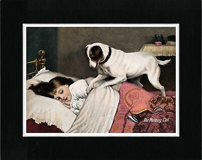 Smooth Fox Terrier Waking Sleeping Girl Vintage Style Dog Art Print Ready Matted