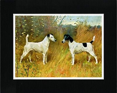 Smooth Fox Terrier Two Dogs Vintage Style Dog Art Print Ready Matted