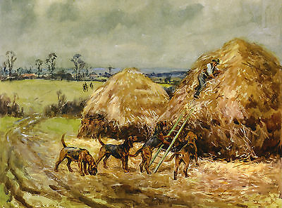 Bloodhound Dogs And Tracked Man In Lovely Rural Scene On Dog Greetings Note Card