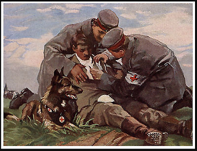 Belgian Shepherd Red Cross War Dog Lovely Vintage Style Dog Print Poster