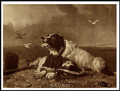 Newfoundland Saves Drowning Boy Great Antique Style Sepia Dog Art Print Poster