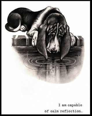 Basset Hound Admires Reflection In Pond Lovely Comic Dog Art Print Poster