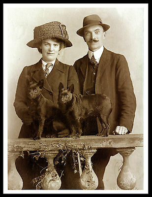 Lady And Gentleman With Schipperke Dogs Vintage Style Dog Photo Print Poster