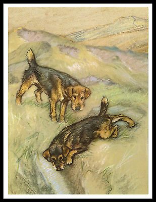 Lakeland Terrier Two Dogs Lovely Vintage Style Dog Art Print Poster