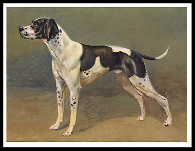 Pointer Great Vintage Style Dog Art Print Poster