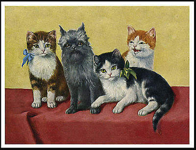 Affenpinscher Little Dog And Cats Lovely Vintage Style Dog Print Poster