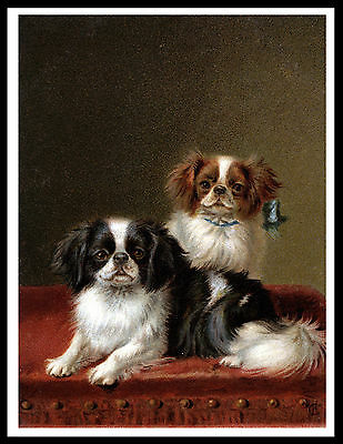 Japanese Chin Two Dogs Charming Vintage Style Dog Art Print Poster