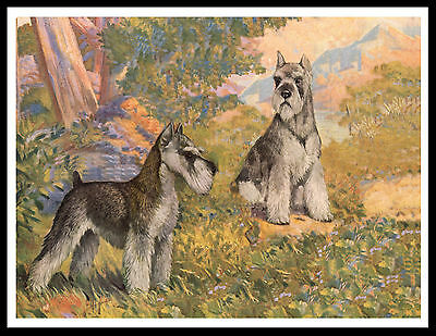Schnauzer Two Dogs Lovely Vintage Style Dog Art Print Poster