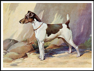 Smooth Fox Jack Russell Terrier Standing Dog Lovely Dog Print Poster