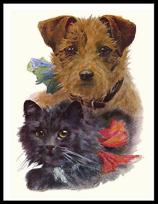Border Terrier And Cat Lovely Vintage Style Dog Print Poster
