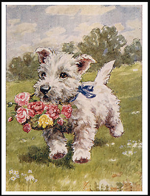 Westie West Highland White Terrier Basket Of Flowers Charming Dog Print Poster