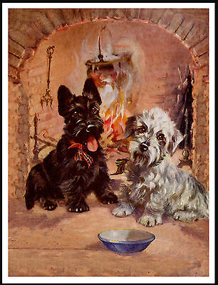 Dandie Dinmont And Scottish Terrier Dogs Sat By The Fire Lovely Dog Print Poster