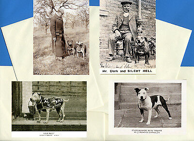 Staffordshire Bull Terrier 4 Vintage Style Dog Print Greetings Note Cards #2