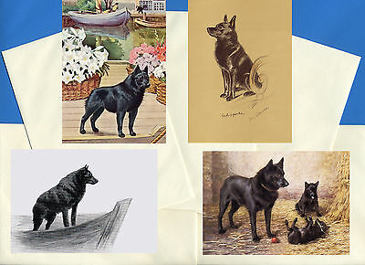 Schipperke Pack Of 4 Vintage Style Dog Print Greetings Note Cards #1